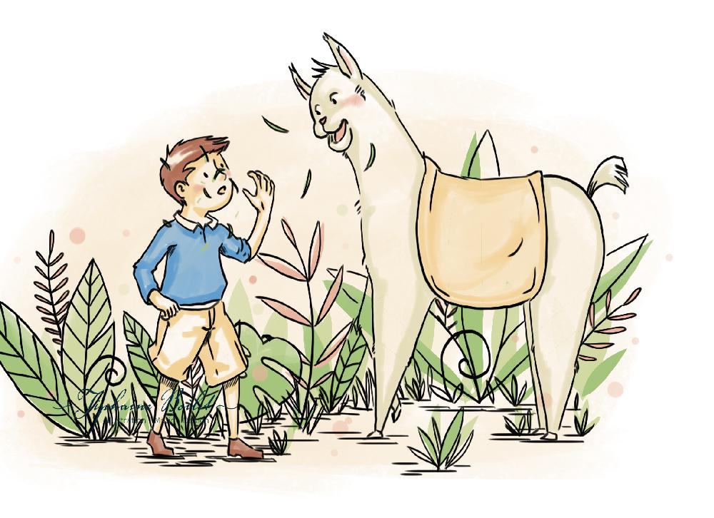 Lama | Tiphaine Boilet illustratrice jeunesse Nantes lama illustration