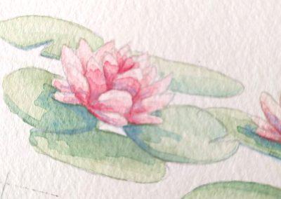 aquarelle technique débutant aquarelle fleur Tiphaine Boilet illustratrice freelance Nantes
