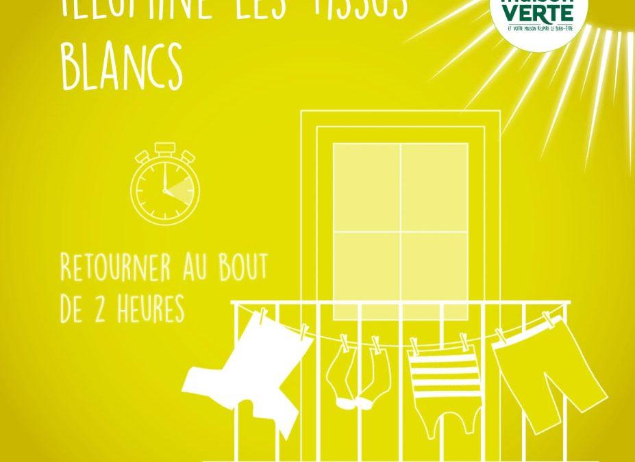 Motion design pour réseaux sociaux | Tiphaine Boilet motion designer freelance Nantes