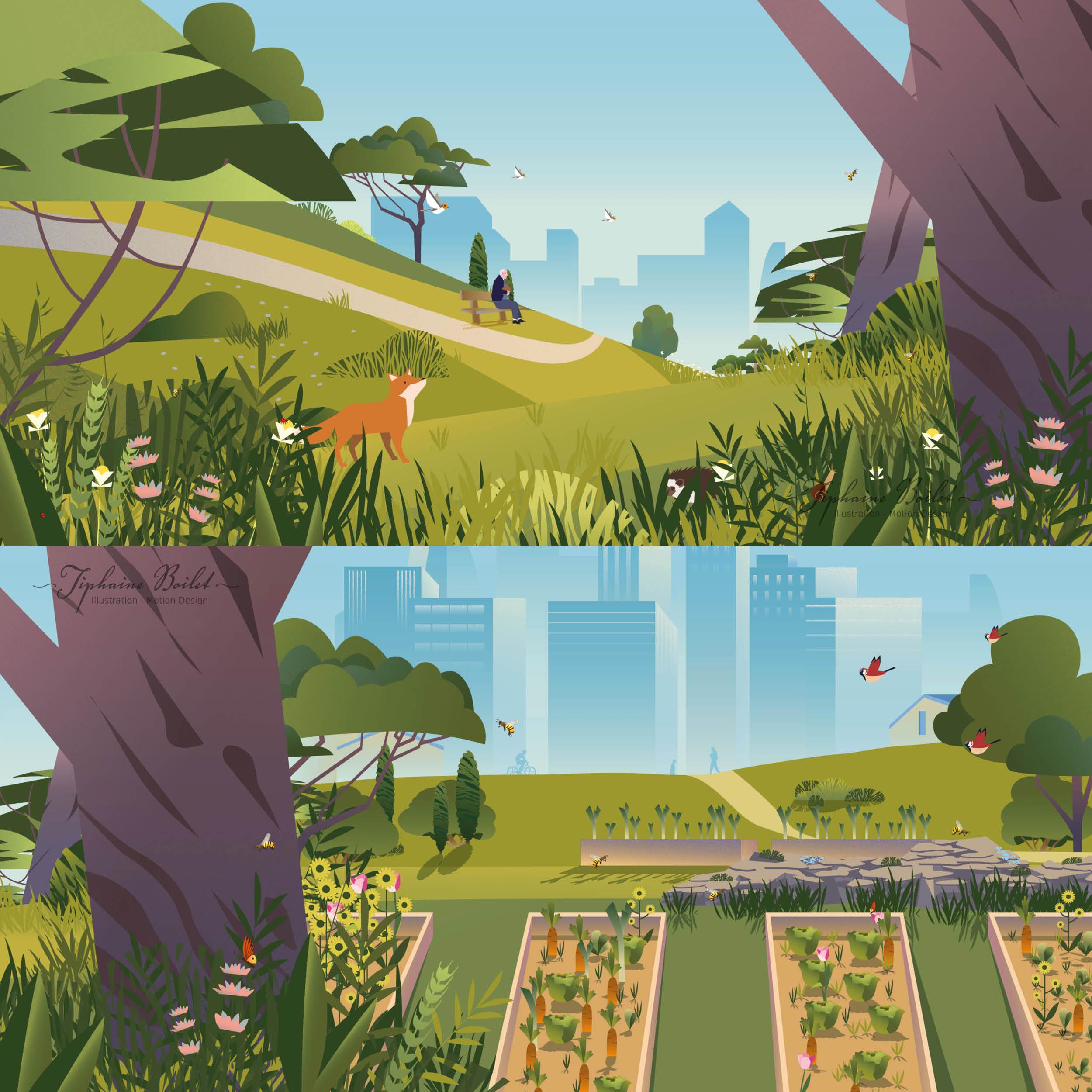 Nature4Cities motion design 2D Tiphaine Boilet motion designer freelance Nantes
