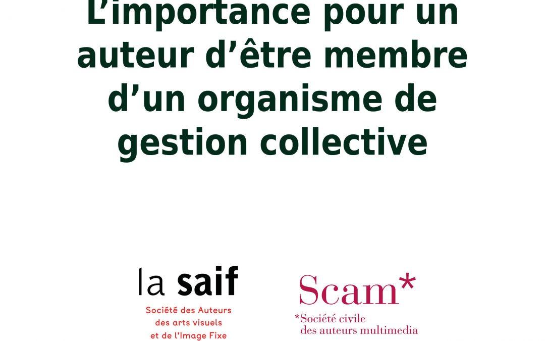 Organisme de gestion collective | Tiphaine Boilet autrice illustratrice Nantes